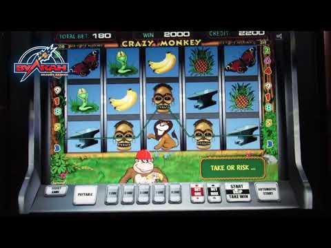 Играть в казино crazy monkey
